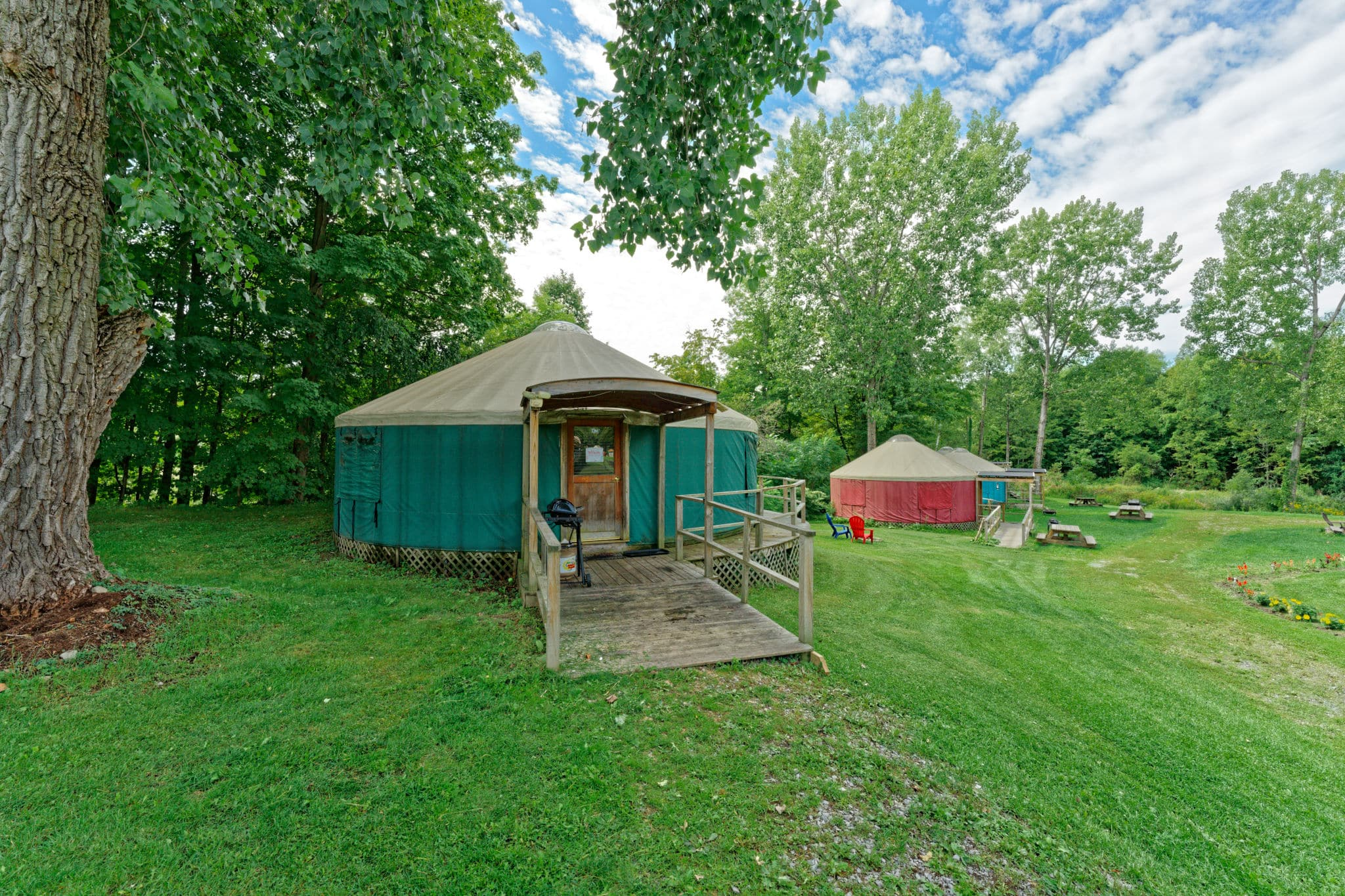 Luxury glamping yurt by a tree on Andelyn Farm