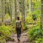 A women hiking through a forest